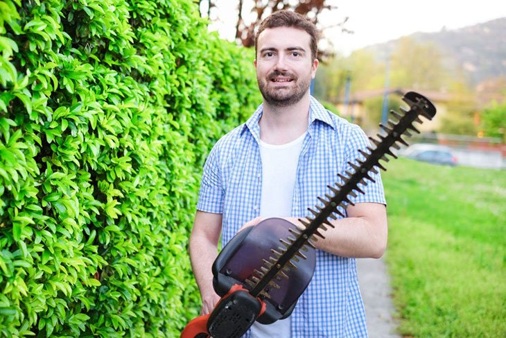 best petrol hedge trimmer 2020